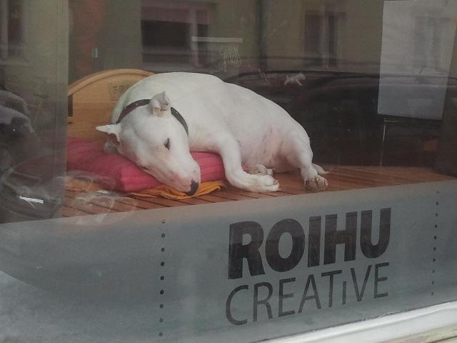 Vid en närmare titt såg jag att hunden var riktig. Den sov gott medan ägaren jobbade vid en dator.