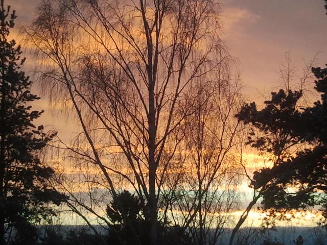 Morgonrodnad mot öst, från köksfönstret sett.