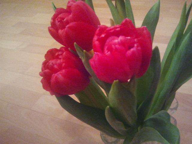 En föraning av våren.