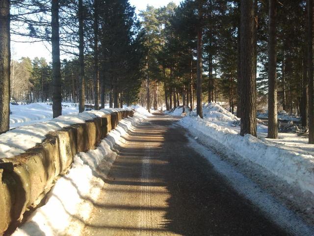 Gång- och cykelvägen längs Antbyvägen. Till vänster nya kyrkogården.