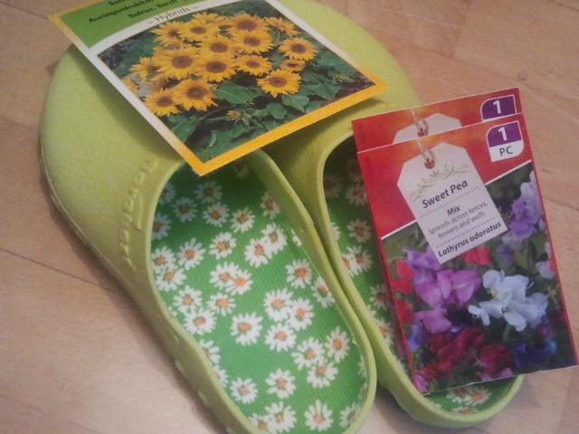 Solrosfrön, luktärtsfrön och trädgårdsdojor.
