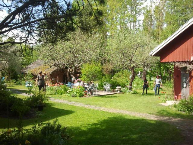 Här bor Olga Isaeva och Markku Pulkkinen. Konungsdammen är en sevärdhet i Lovisa, inte minst för blommornas skull. En massa olika rosor kommer upp senare i sommar.