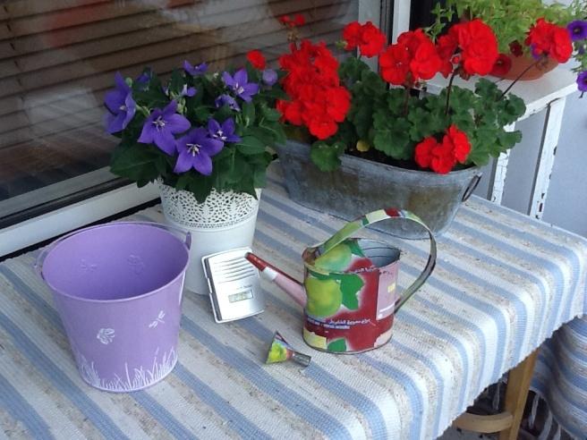 Var i går på Robinhood. Skulle bara ha en baddräkt. Slutade med att jag också köpte solbrillor på rea och kläder. Och så den här söta hinken som jag ska ha blommor i.