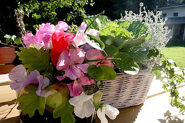 En bukett med luktärter i förgrunden och ett arrangemang med kirskål, murgröna och lite andra växter i bakgrunden.
