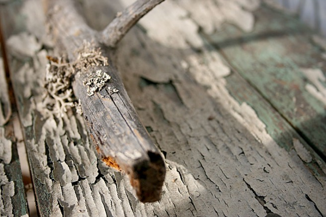 Fascineras av detaljer. Den torra grenen som ligger på den slitna bordsytan är ju bara så oerhört vacker.