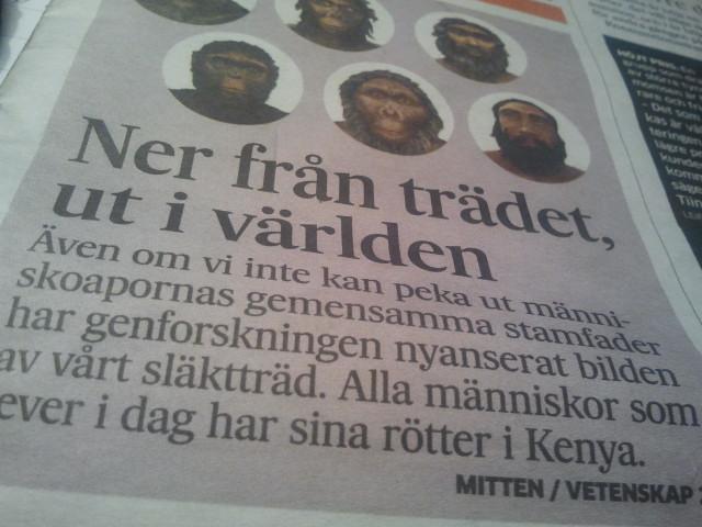 I tisdags publicerade Hufvustadsbladet en intressant artikel.