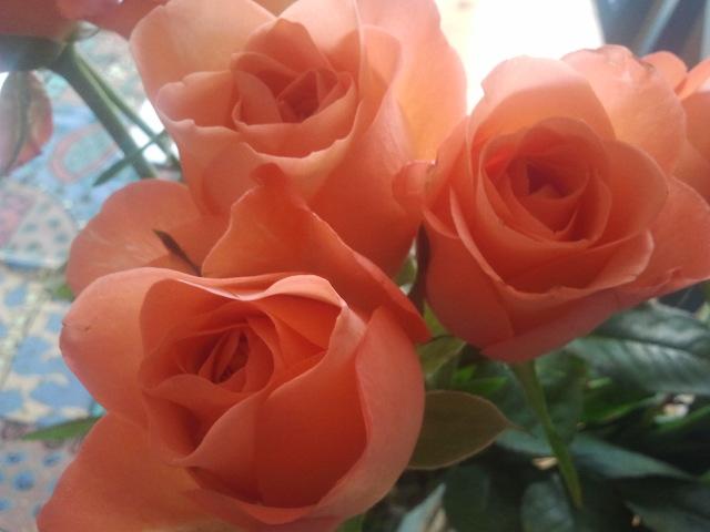Gårdagens gäster hämtade ett fång rosor med sig. Också en välkommen färgklick nu då vi snart övergår till november månad.