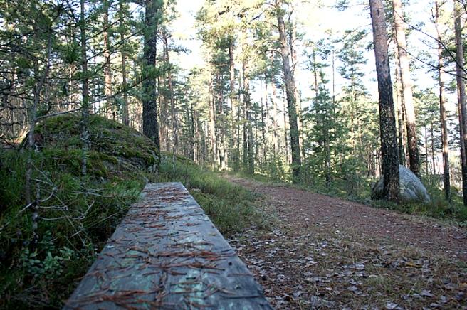 På väg genom skogen till gamla kyrkogården där pappa ligger hittade vi den här gamla bänken som sett sina bästa dagar.
