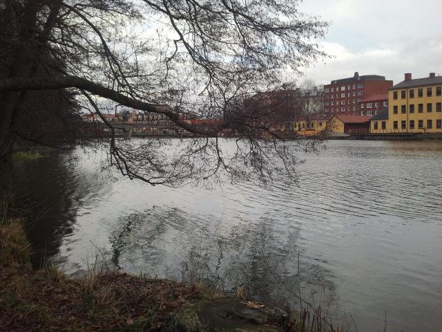 Här flyter Eskilstuna å fram. Ingen is, ingen snö, men riktigt vackert ändå.