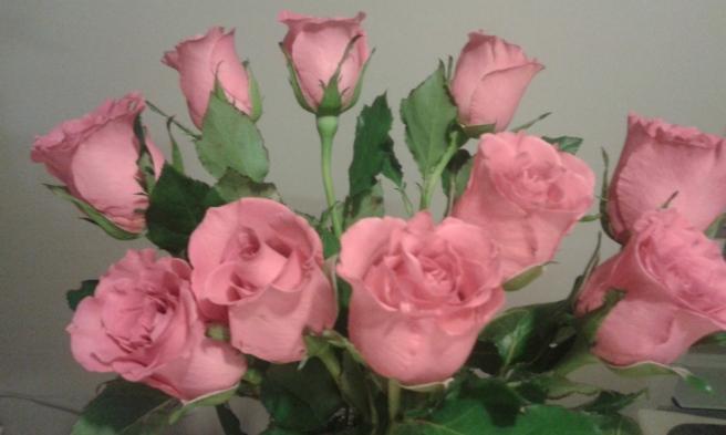 På den andra bilden blev rosorna på något sätt blekare och bakgrunden inte lika varm.