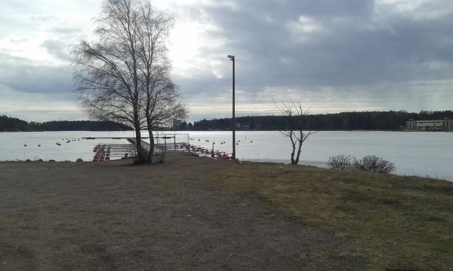 Cyklade ut på Sågudden för att kolla isläget. Har ingen aning om hur tjock den är men det finns inga öppningar i den, förutom en ränna som gjorts för en båt till Såguddsbron (syns inte på bilden).