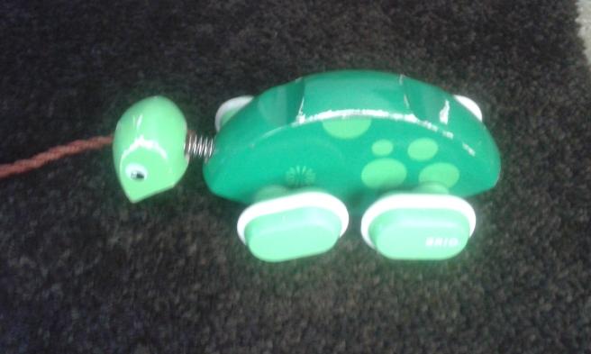 Vi har kommit fram till att det här är en sköldpadda.
