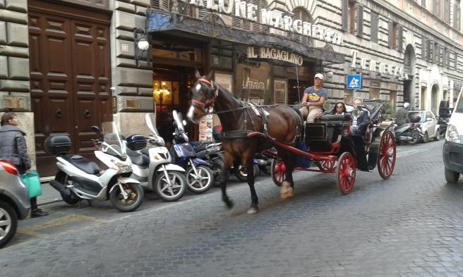 Många valde att åka en tur med hästdroska.