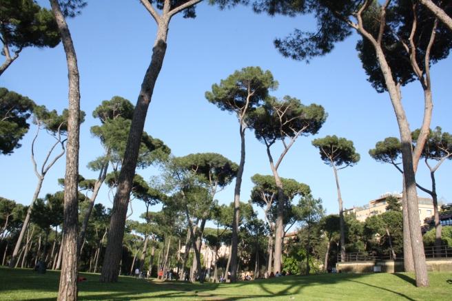 Parco di Villa Borghese. En verklig oas där folk roar sig med att jogga, spela olika boll och kägelspel, åka runt med eldrivna bilar eller trampa i små rikshor.