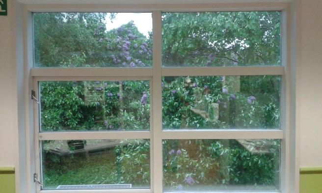Redaktionens fönster på gaveln mot öst.