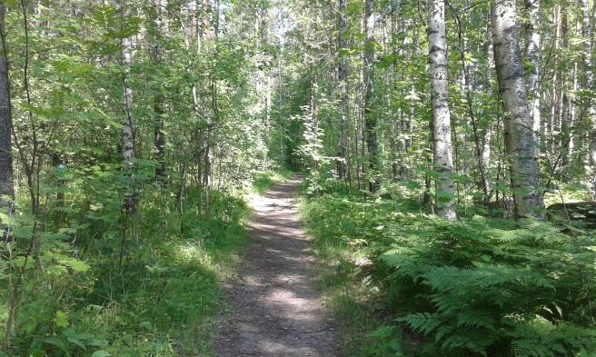 Från Kretsgången kan man gena genom boulognerskogen. Den här stigen leder mot tennisplanerna och badstranden.