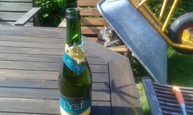 Hurraaa - jag öppnade flaskan själv!