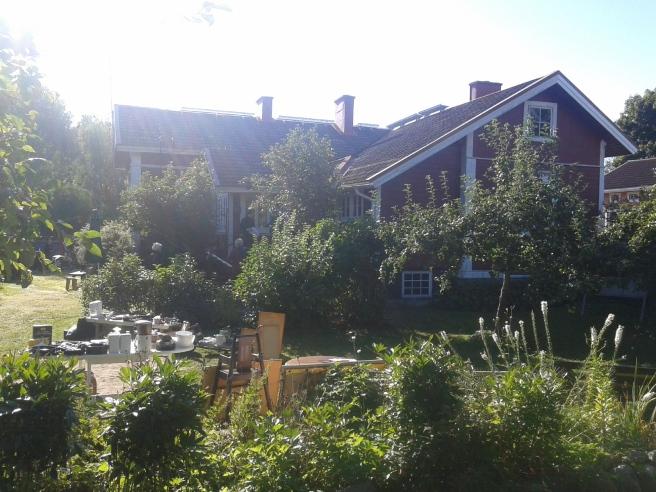Maapelas gård, en härligt lummig oas.
