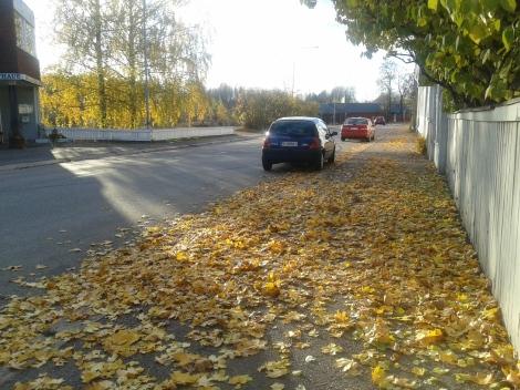 Sibeliusgatan i Lovisa.