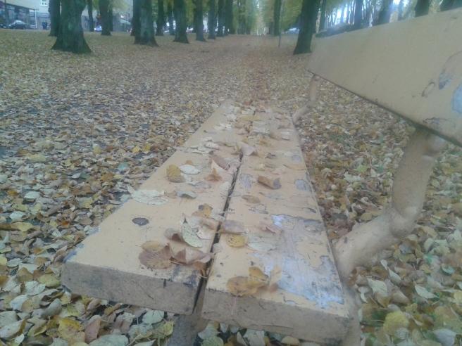 Nu har löven kommit ner från träden och de landar där de landar :-)