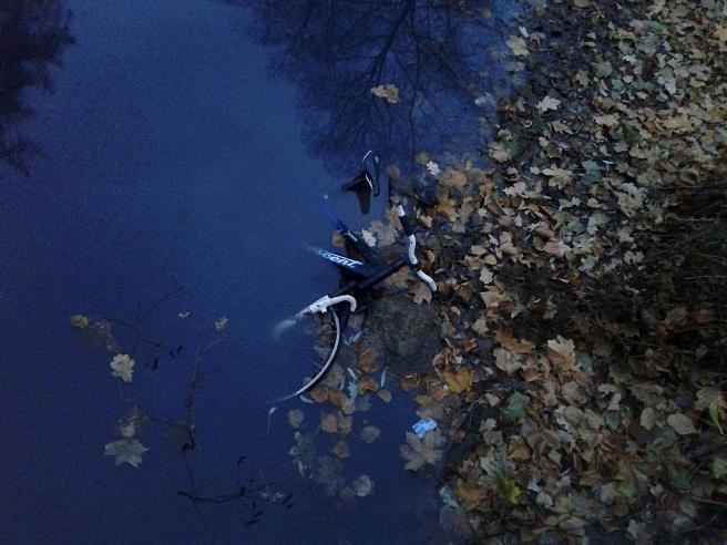 Hur onödigt är inte det här på en skala från fem till tio? Varför slänga en cykel i parkens damm?