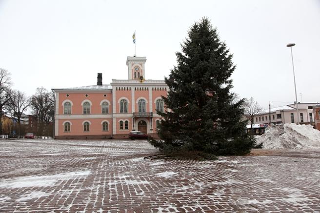 I dag placerades stadens julgran mitt på torget. Foto: Emma Heijnsbroek
