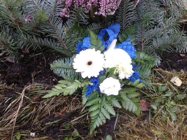 Tror att pappa gillar Finlands färger på blommorna på fars dag.