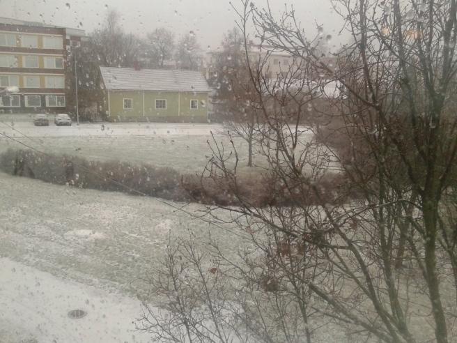 Utsikten från arbetsrummets fönster. Det syns inte på bilden men vi har yrsnö .