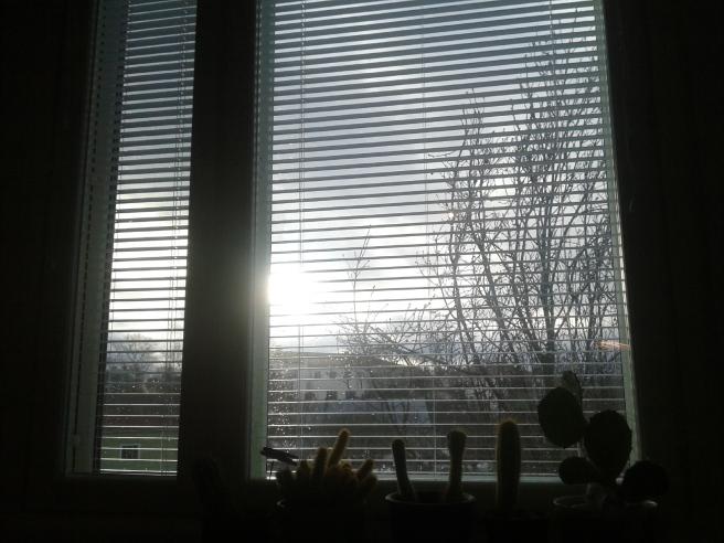 En föraning om vår fastän dagen bjudit på hård blåst och snöblandat regn.