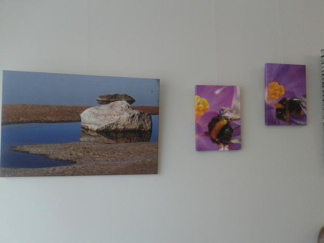 Ytterliga tre foton av Husberg.