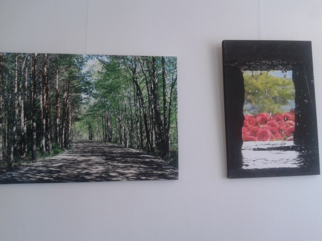 Viveca Husbergs konst pryder väggarna. Här har lokala förmågor möjlighet att visa upp sina alster.