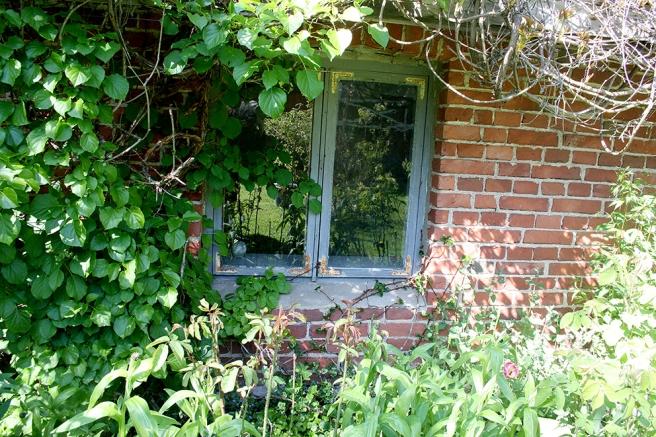 Ett fönster hos familjen Isaeva-Pulkkinen, Konungsdammen, Garnison, Lovisa.