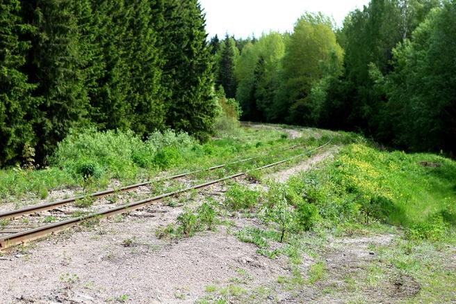 Vem har dragit en järnväg mitt i skogen?