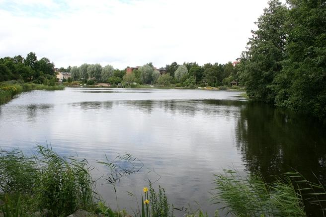 Bortre ändan av parken, vi rundar den lilla sjön, eller egentligen är det en vik.