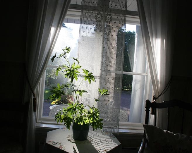 Ett fönster fotograferat från hallen inne i Rudom gård i Lappträsk.