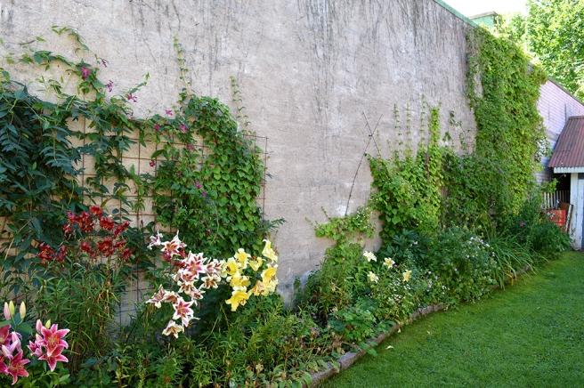 Helt underbart med klängväxter mot en sådan här vägg.