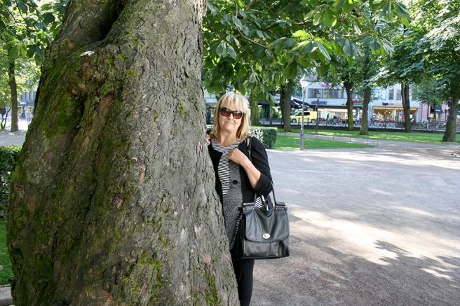 Det här trädet finns i Esplanadparken i Helsingfors.