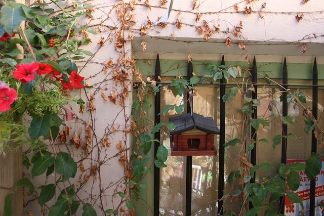 En vägg på innergården.