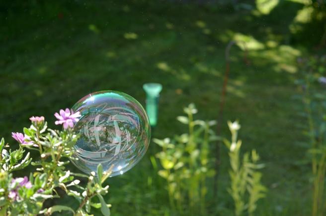En bubbla på sin färd genom trädgården. Spännande med speglingarna i den.