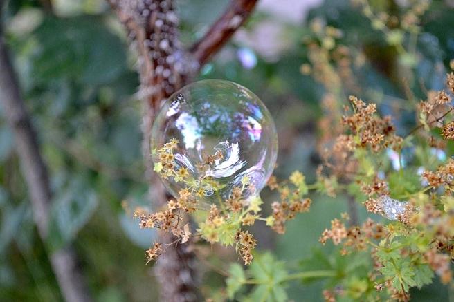 När en bubbla fastnade i växtligheten fick jag en idé.