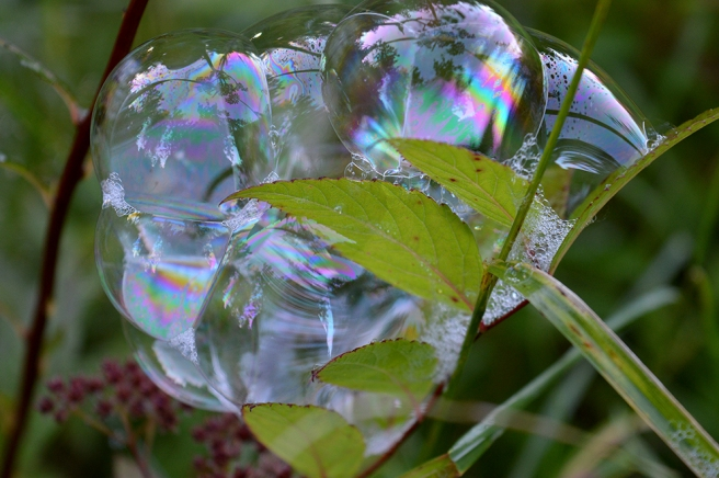 Bubblor som omfamnar varandra.
