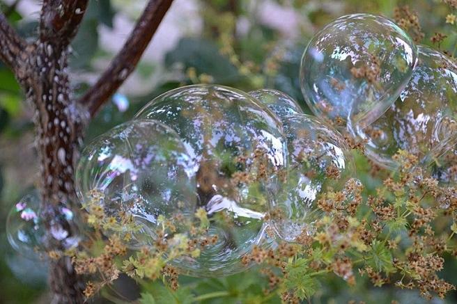 En familj av såpbubblor.