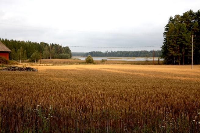 Här kan man ana att hösten är i antågande. Väldigt vackert, men stämningar är ju svårfångade på bild.