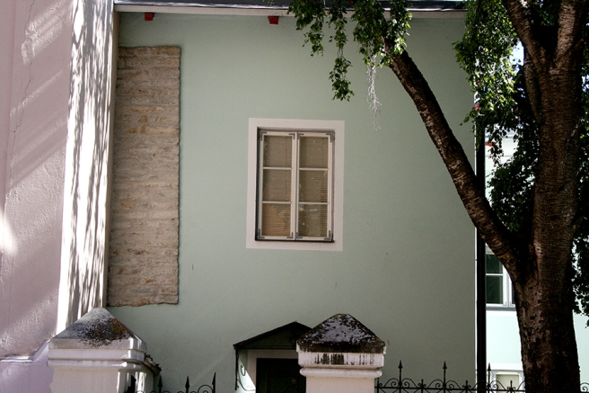 Eftermiddagssolen träffar så vackert väggen där skuggor av trädets grenar avtecknar sig.