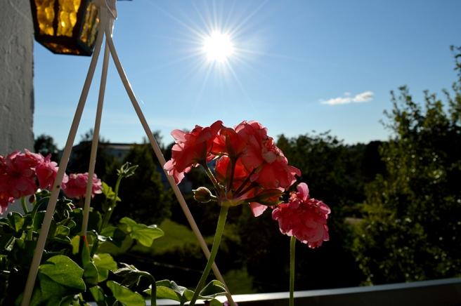 Sol från klarblå himmel och +20 grader då vi redan gått tio dagar in i september.