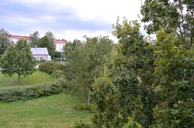 Vyn västerut, fortfarande idel grönt i sikte :-)