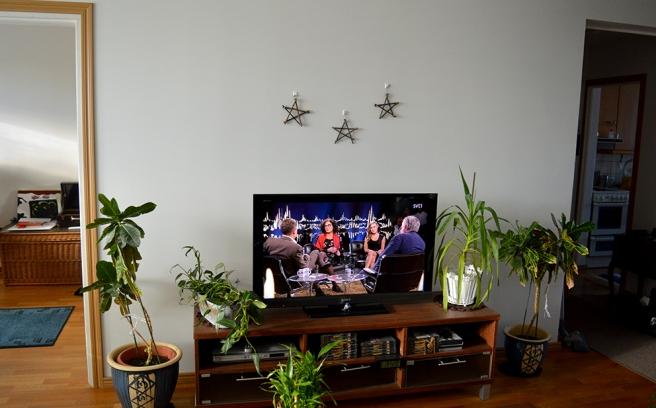 De kanske ser små och ensamma ut på den här bilden, men jag ville ha stjärnorna på en plats där jag nästan hela tiden ser dem. Jag sitter ju ofta i soffan och läser, skriver, ser på tv osv.