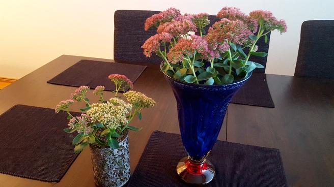 De ljusare blommorna i den lilla vasen tog jag in för flera veckor sedan. De har fått rötter. De i röd nyans tog jag in i dag.