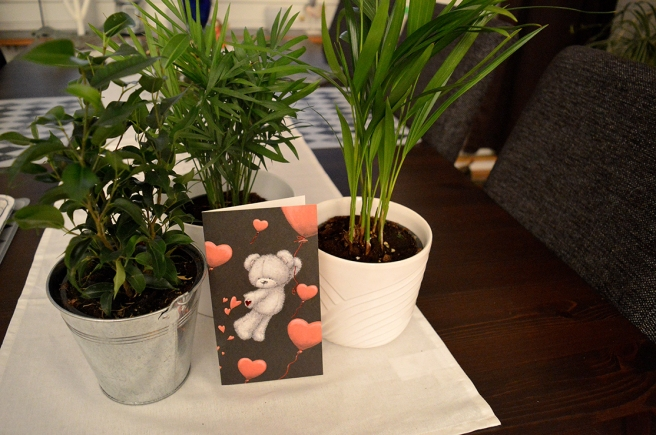 Nya växter och ett kort inför alla hjärtans dag.