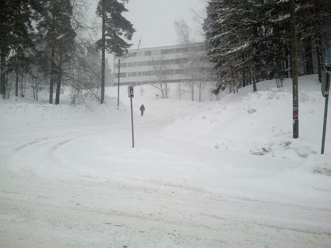 Bilden togs den 28 februari där jag bodde på den tiden.
